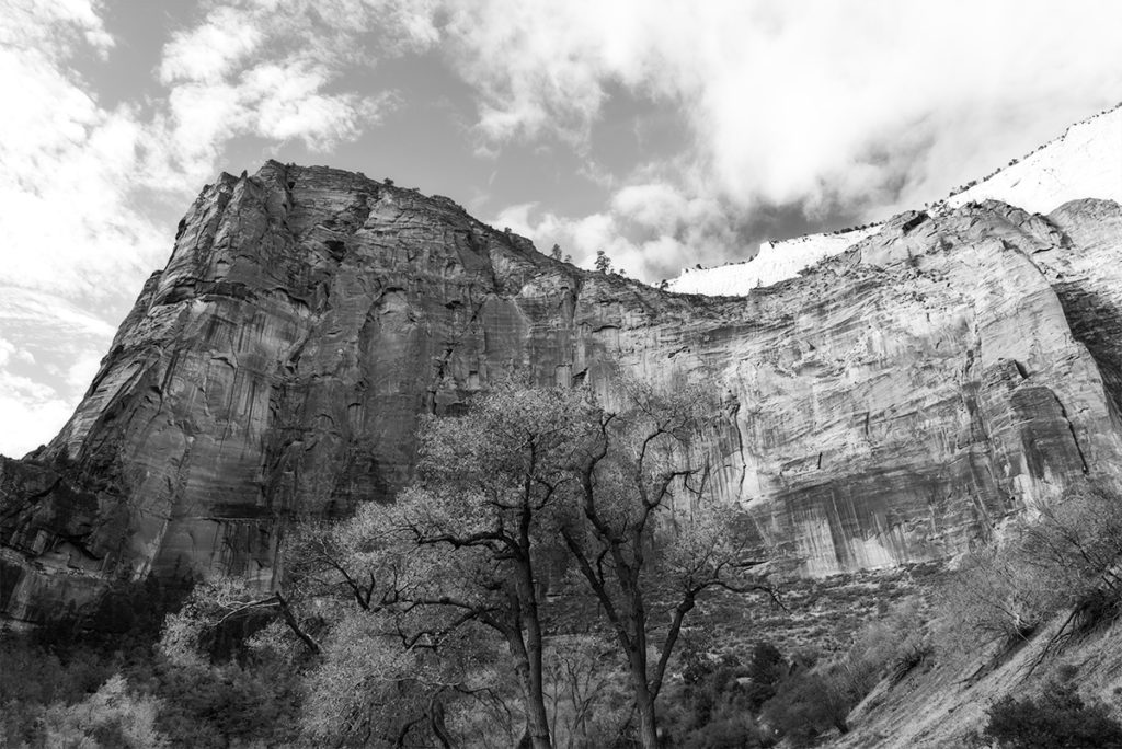Mountain side in Zion National Park